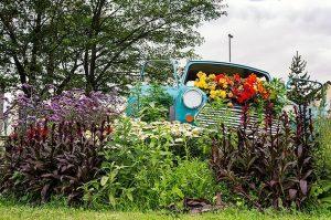 Flowery Mini In Rochdale
