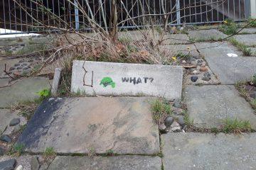 Tortoise Stencil Art Graffiti on Garden Lane in Chester.