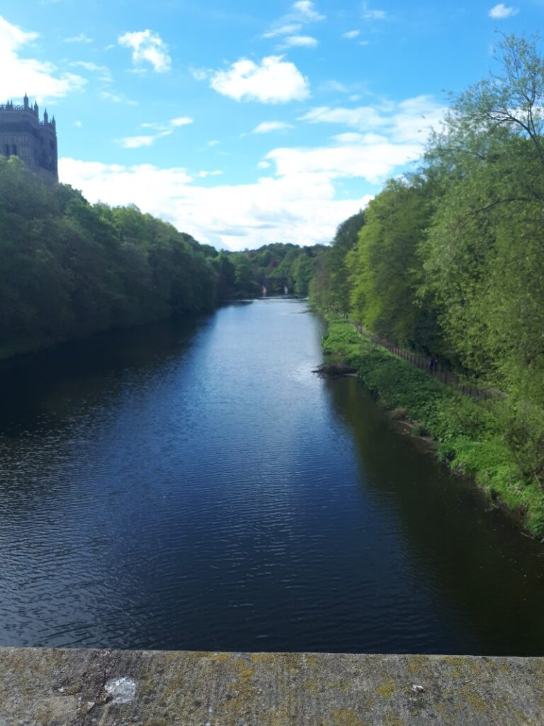 The River Wear flowing through Durham. 2/5/19.
